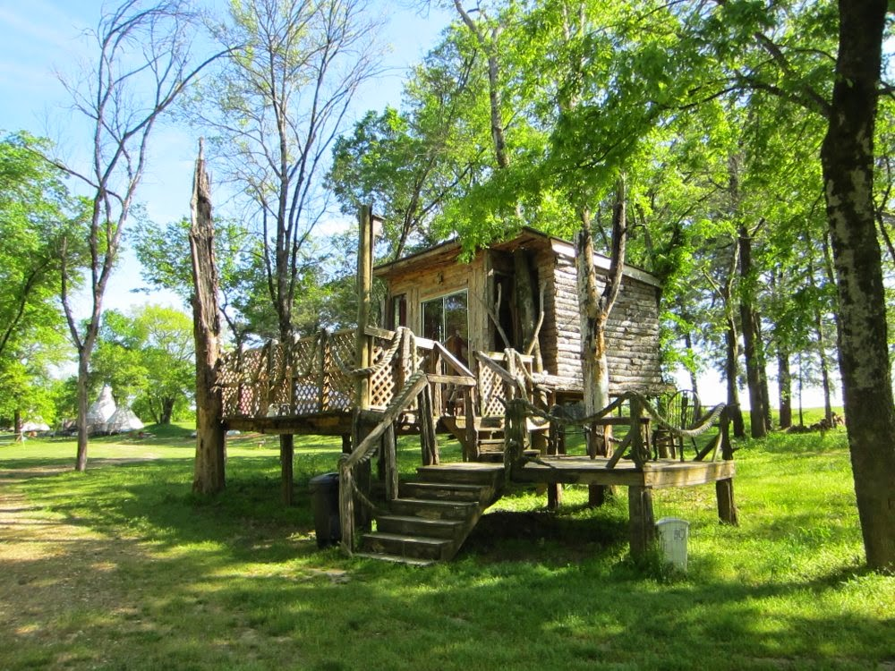 Cowspotdog pet friendly vacation spots for Cabins near crater of diamonds state park