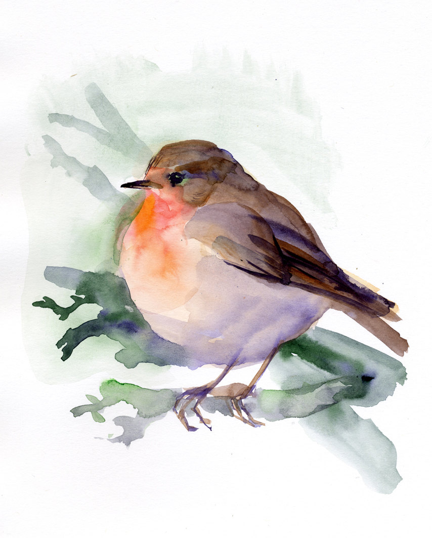 Bird In Everything: Watercolor Bird Paintings