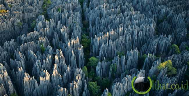 The Stone Forest (China)