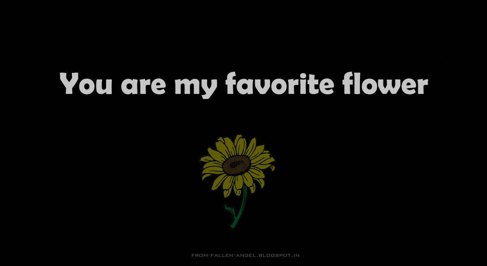 You are my favorite flower