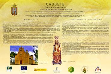 INFORMACIÓN DEL CAMINO DE SANTIAGO EN CAUDETE