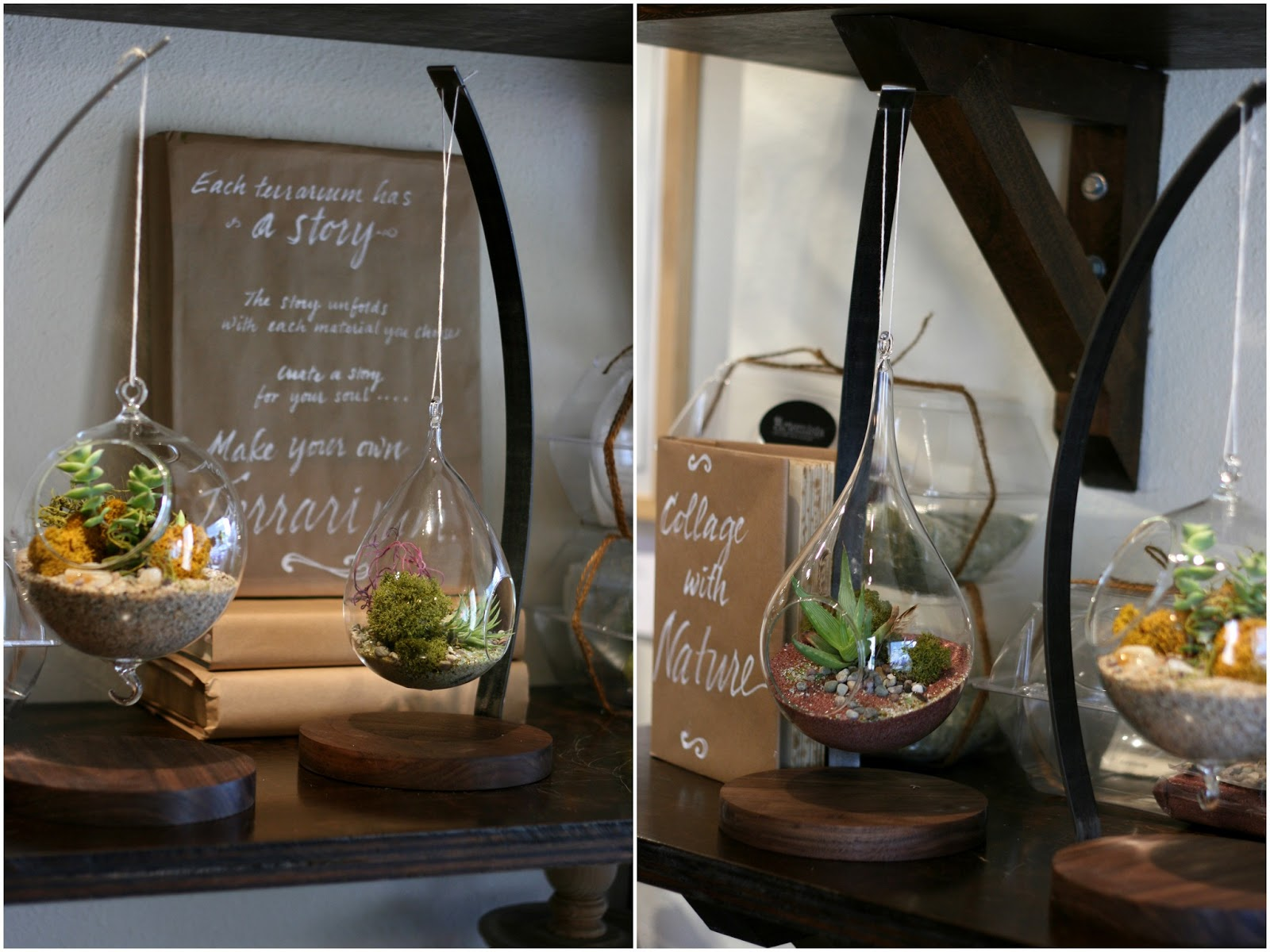 The Greatest Little Terrarium Shop And My First Attempt