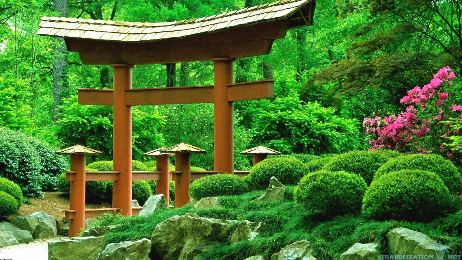 Traditional japanese gardens - Masszugu