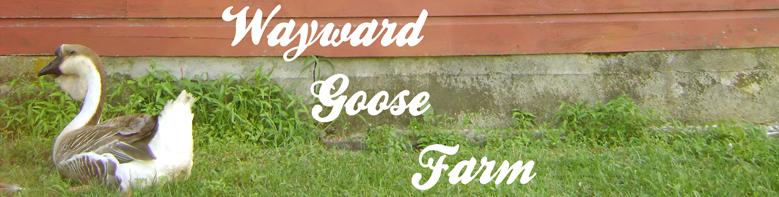 Wayward Goose Farm