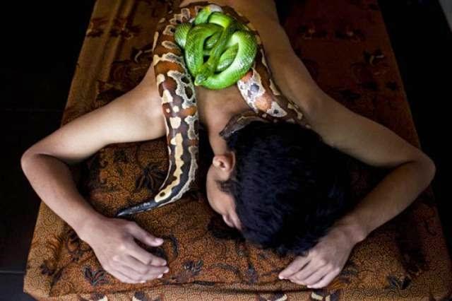 Reflexology - Massage python