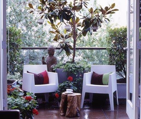 Algumas Rvores Inclusive As Frutferas Aceitam O Cultivo Em Vasos
