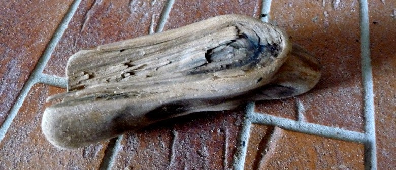 Nanouanne un aper u de ma petite collection de bois flott s for Recherche bois flotte