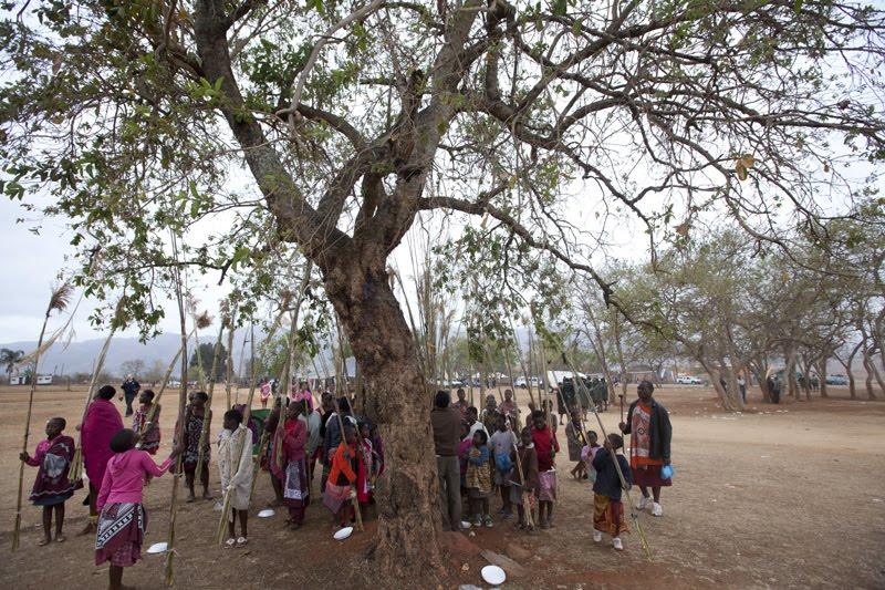 Festival Tarian Lalang Di Afrika (13 Gambar)
