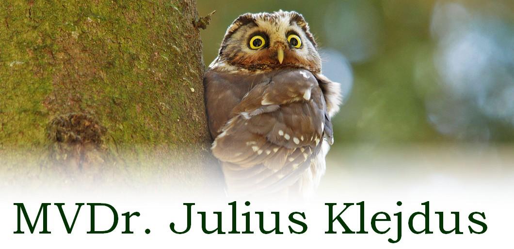 MVDr. Julius Klejdus
