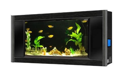 Fish Tank Aquarium For Sale Buy Best Price Aquavista