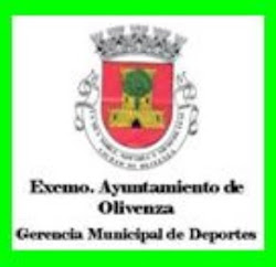 EXEMO AYUNTAMIENTO DE OLIVENZA