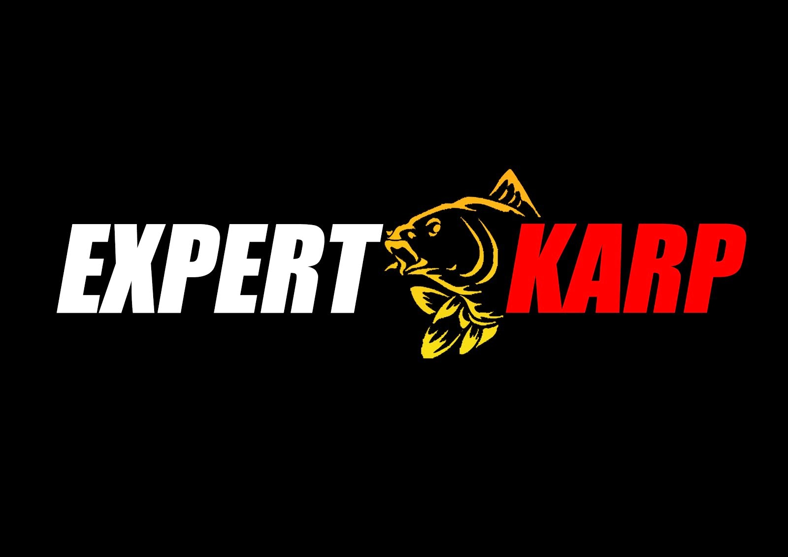Portal.expert-karp.pl