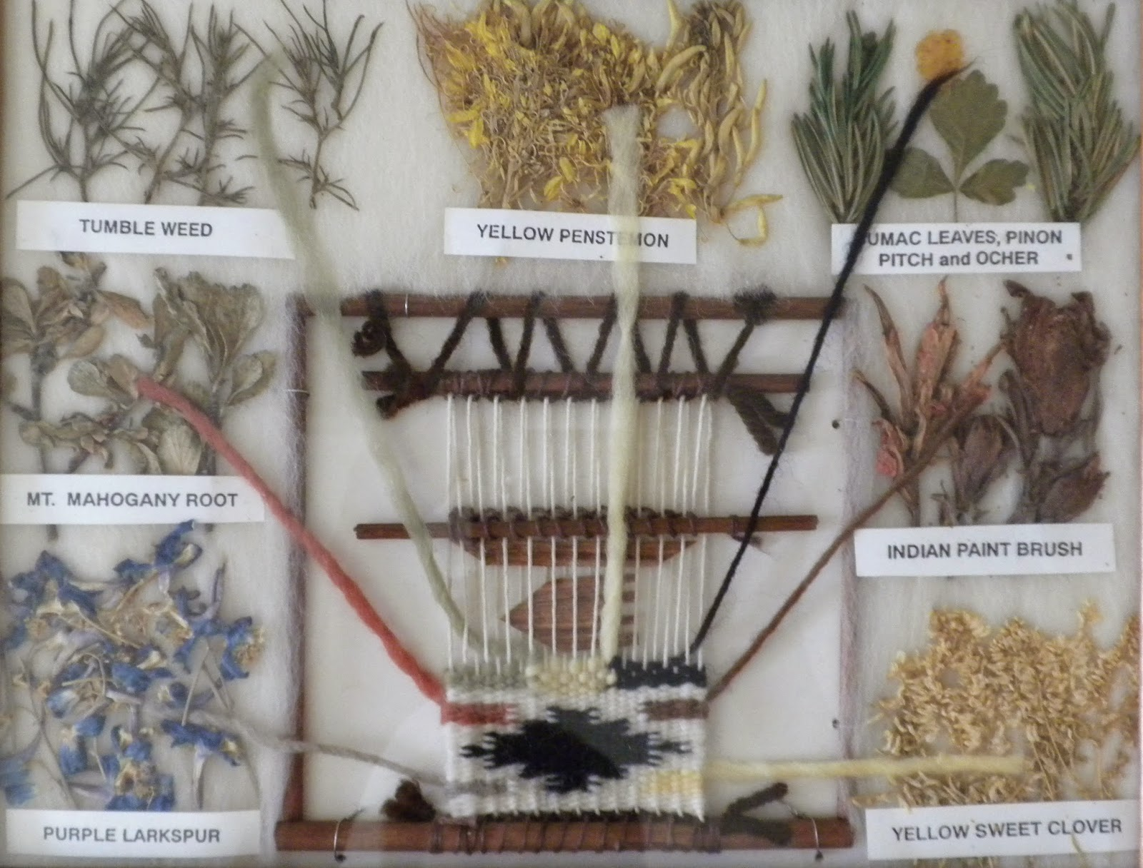 panoply garden plants and native american textiles