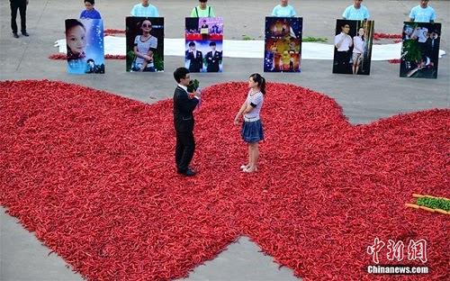 propose chili 2