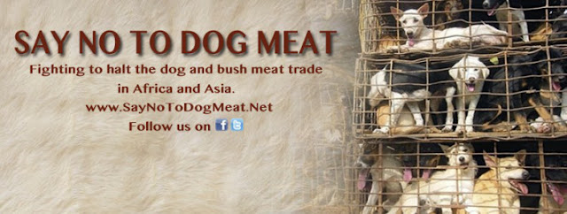 Say No To Dog and Cat Meat