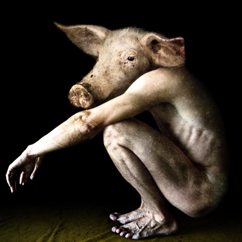 10-Francesco-Sambo-Man-Animal-Hybrids-Mashup-Photography-www-designstack-co