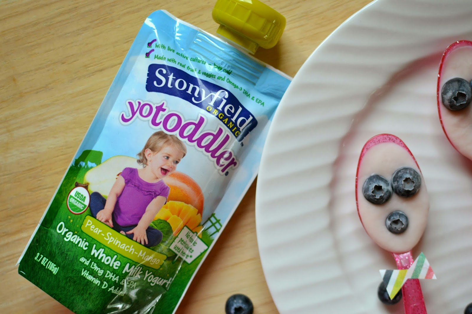 Mommy Testers, Stonyfield organic yogurt pouches, Organic yogurt bites, Healthy frozen dessert for kids