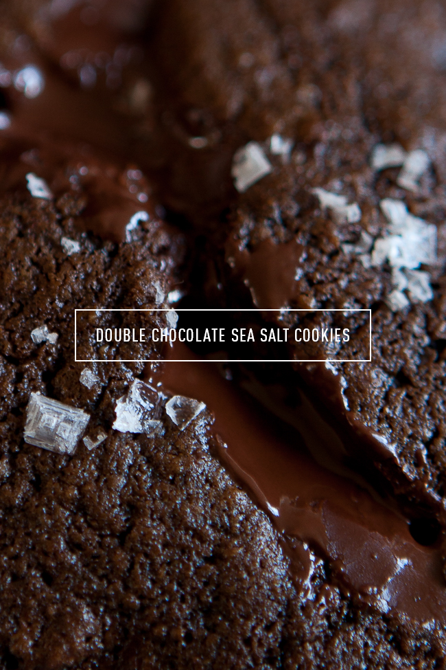 Double Chocolate Sea Salt Cookies / blog.jchongstudio.com