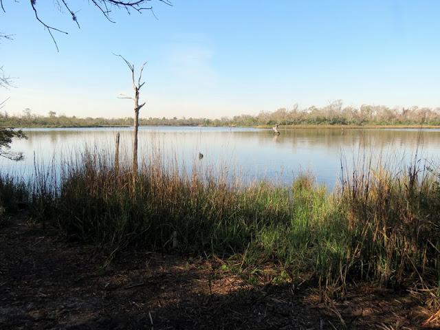 Overlook at Armand Bayou Nature Center.