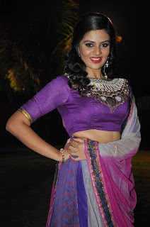 Actress Srimukhi Pictures in Half Saree at Dhakshmi Talupu Tadithey Audio Launch   (15)