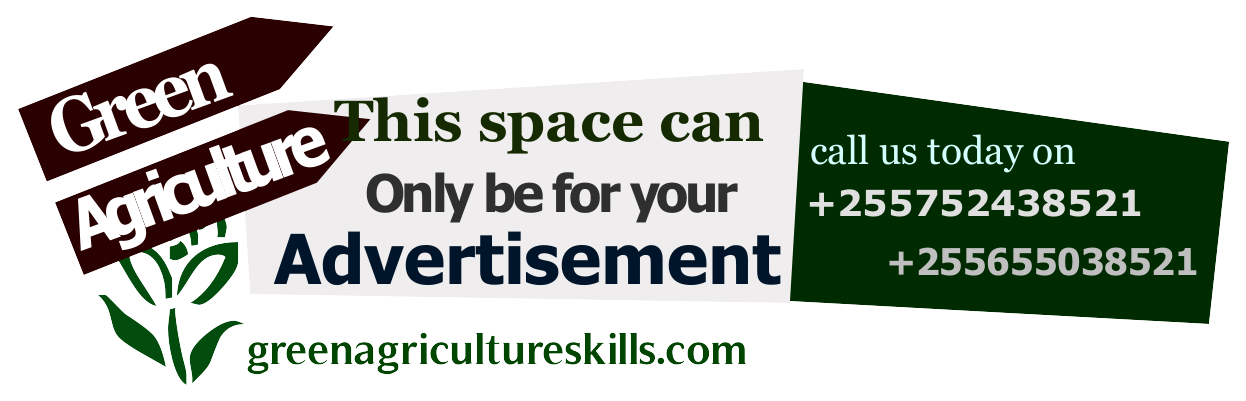 ADVERTISE WITH US HERE