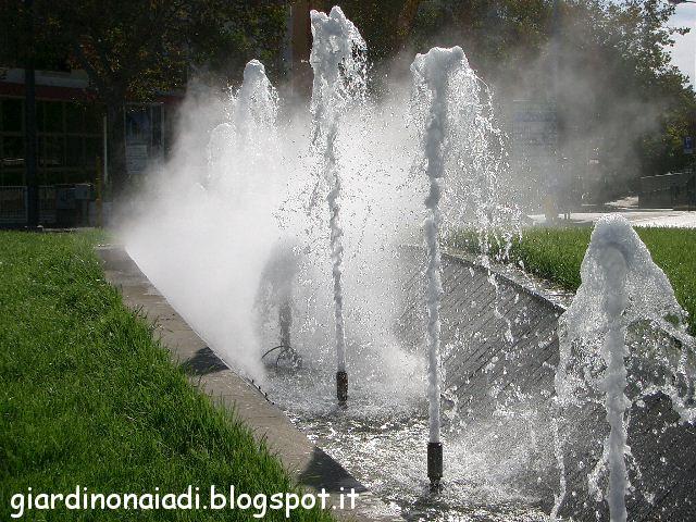 Il giardino delle naiadi ottobre 2012 for Laghetto giardino zanzare