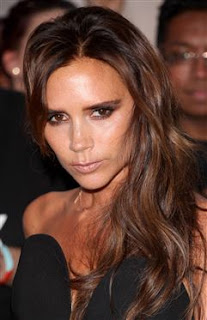Victoria Beckham helicopter: Star chartered helicopter for school meeting