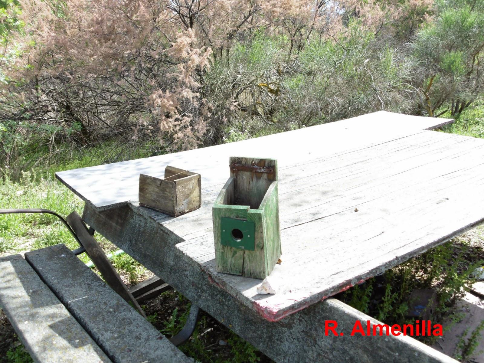 Descubriendo las aves de madrid sur ruta por getafe for Como llegar a getafe