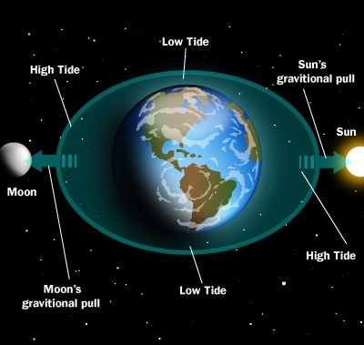 the closeness of the moon to earth can turn tides The moon's gravitational force is slightly stronger on the side of earth that is closer to the moon than it is on the side of earth that is farther from the moon this small difference in the strength of the moon's gravitational force pulls earth's oceans into an elliptical shape.