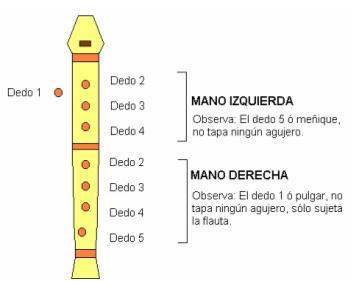 flauta digitacion