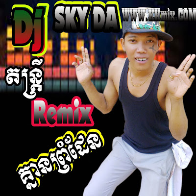 Album Mix : New DJ Sky Da Remix 2013-2014