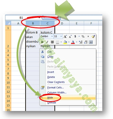 Picture: How to Hide columns or Rows in Microsoft Excel