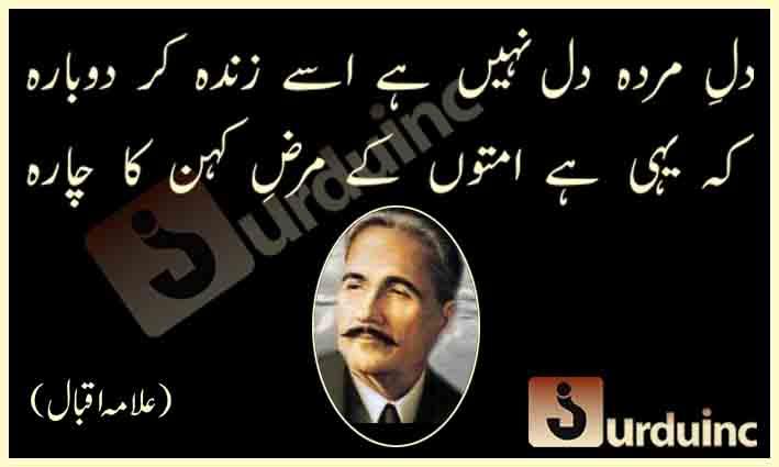 alama2Biqbal2B09 07 14 - علامہ اقبال ڈے کی مناسبت سے ان کے کچھ اشعار