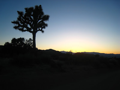 Eureka Peak Sunset Joshua Tree