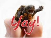 Turtle Trot SAL