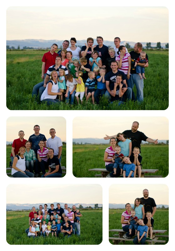 alfalfa field, Idaho Falls, Idaho farm, family reunion pictures, silly family picture, Kingsley family,