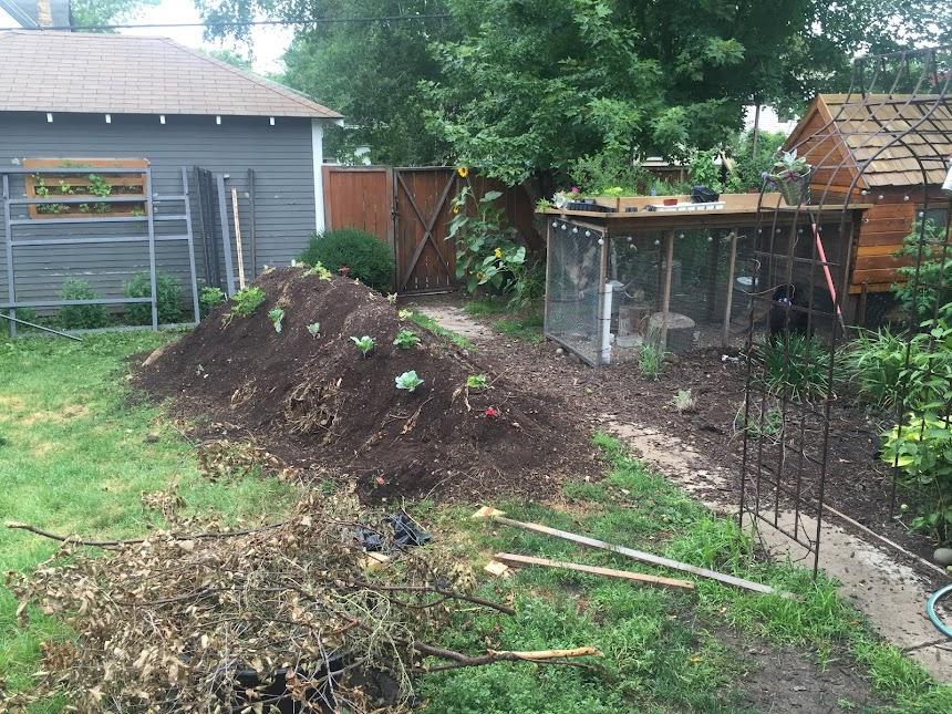 Friend's Backyard Hugel