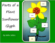 Parts of a Plant Sunflower Glyph
