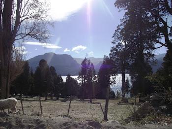 Cerca del lago Traful Neuquen