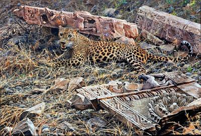 Cuadro Tigre Salvaje Pintura Oleo