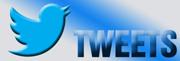 Mantenha-se actualizado com os nossos tweets!