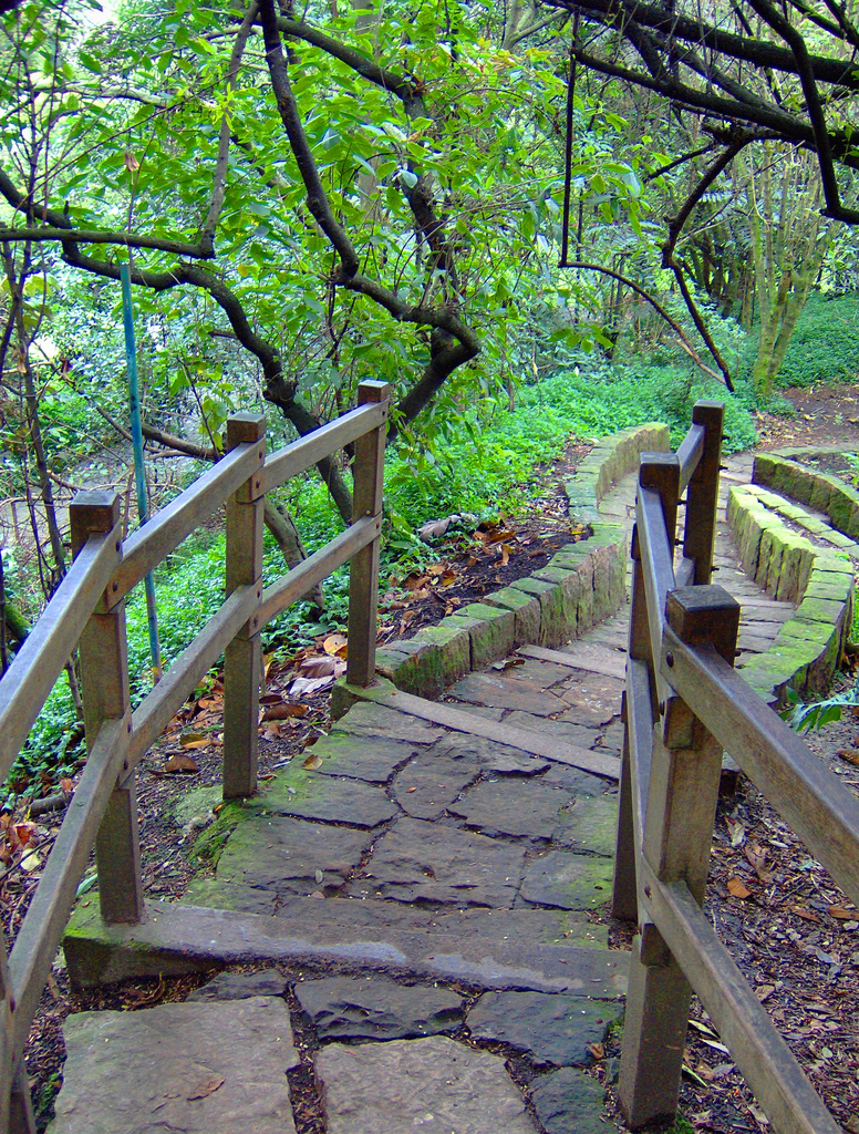 Parques Tamaticos Jardin Botanico