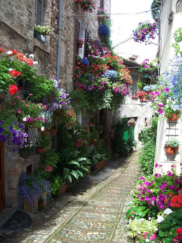 Las calles floridas de spello for Jardines venecia