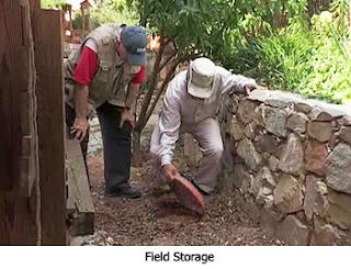 Field Storage