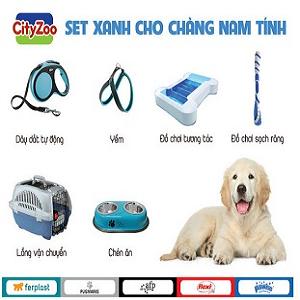 Dog Supplies [Phụ Kiện Cho Chó]