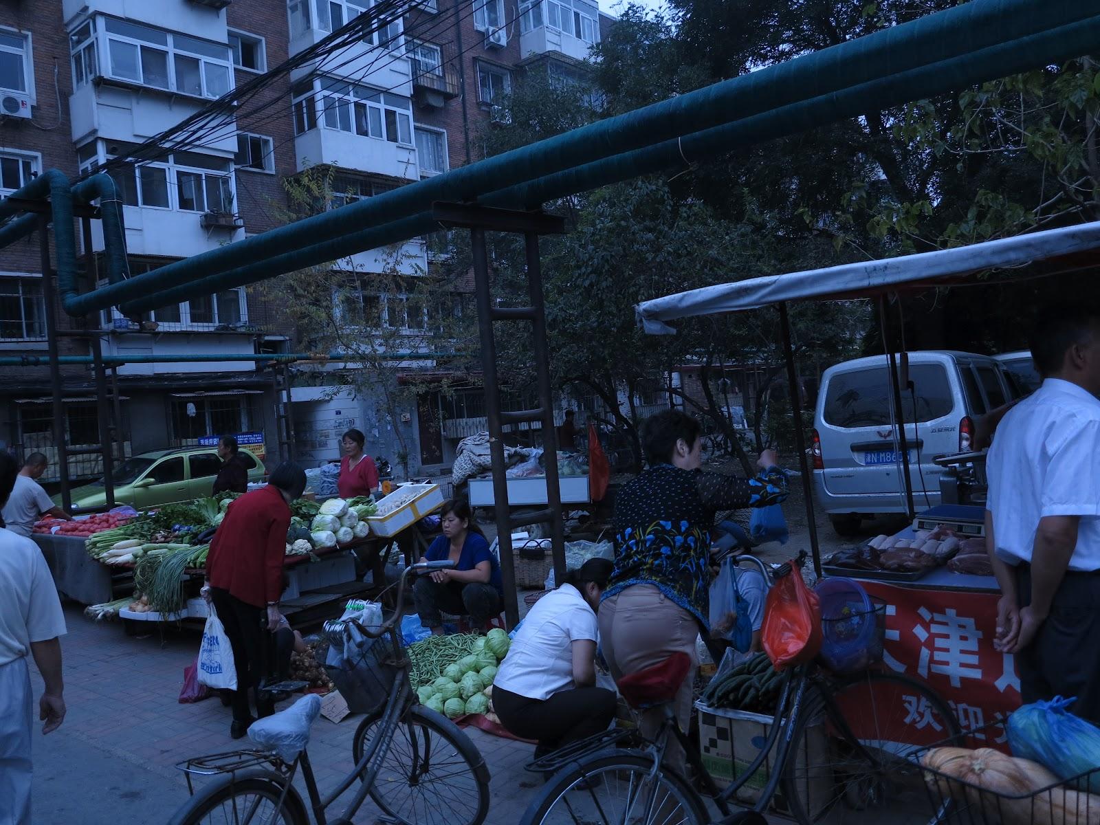 Shidan's OIP at Tianjin: September 2012
