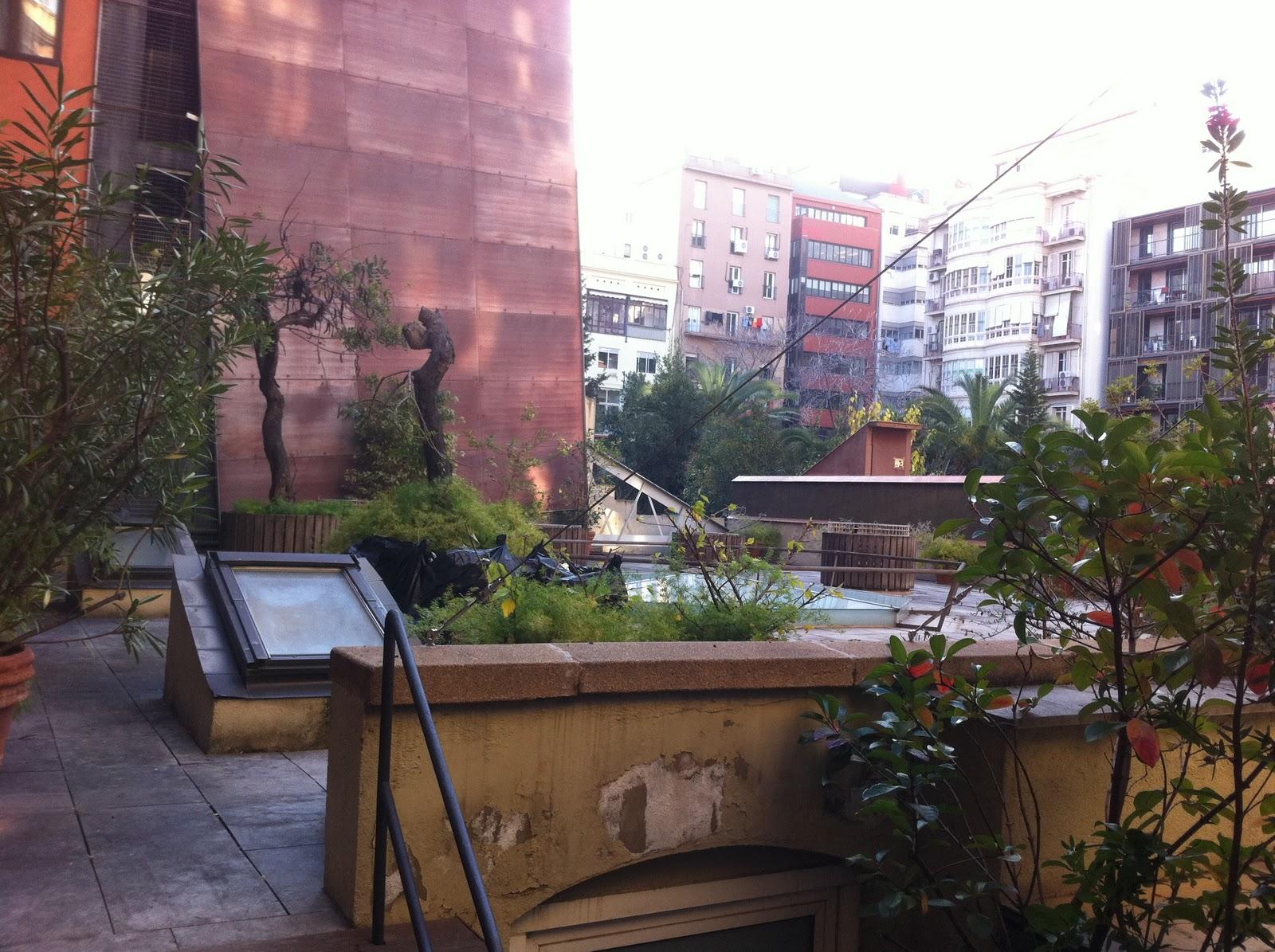 Jardineria professional barcelona 01 2012 for Jardineria barcelona