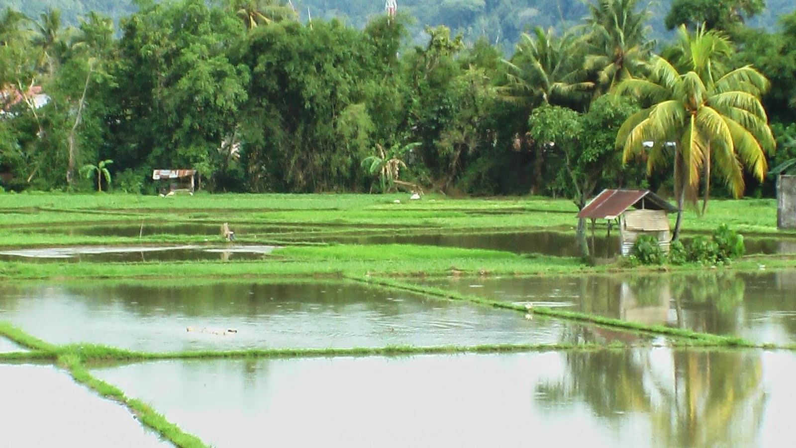 Tata Cara Permohonan HGB diatas Tanah Hak Pengelolaan