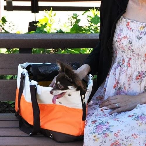 Luck Grass Fashion Shoulder Bag Sling Pet Carrier