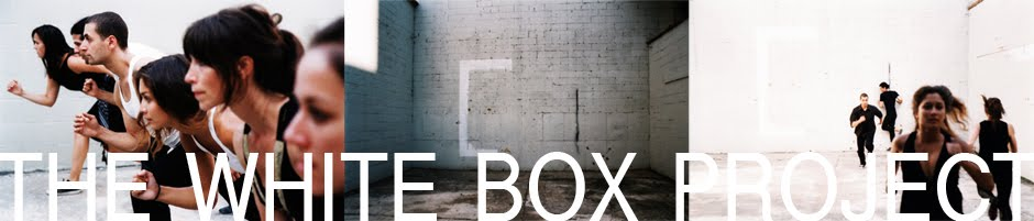 The White Box Project